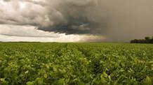 Rio Grande do Sul deve ter temperaturas elevadas e chuvas irregulares nos próximos dias