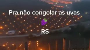 Vídeo de fogo em tambores para proteger parreiral de geada não é do Rio Grande do Sul