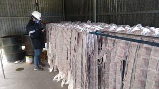 Ação conjunta autua empresas por uso inadequado de agrotóxico em cargas para exportação