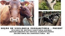 Médicos veterinários habilitados pela Secretaria da Agricultura, Pecuária e Desenvolvimento Rural (S