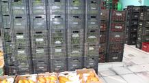 Mais de 86 mil pessoas são beneficiadas pelo programa Prato Para Todos, da Ceasa