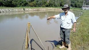 Microaçudes e kits de irrigação trazem água para famílias do Alto da Serra do Botucaraí e Vale do Ri