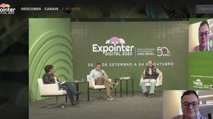 Painel da Expointer descreve oportunidades da olivicultura para produtores rurais