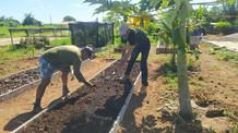 Prazo para apresentar propostas ao Programa AgroResidência é prorrogado até o dia 18 de outubro