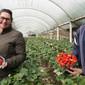 Programa Estadual da Agricultura Familiar estimula produção das agroindústrias gaúchas