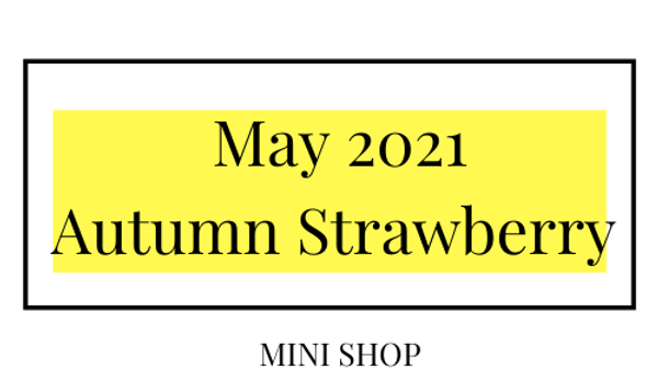 Mini Online Shop - May 2021 - Autumn Strawberry