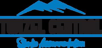 Twizel Central Logo.png