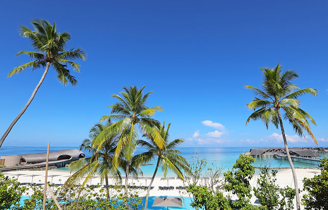 View from Alba Rooftop - St Regis Maldives