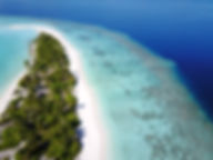 View coral reefs surrounding an island in the Maldives