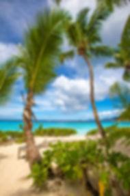 Petit Anse Beach