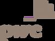 pwc-logo-png-transparent_grey.png