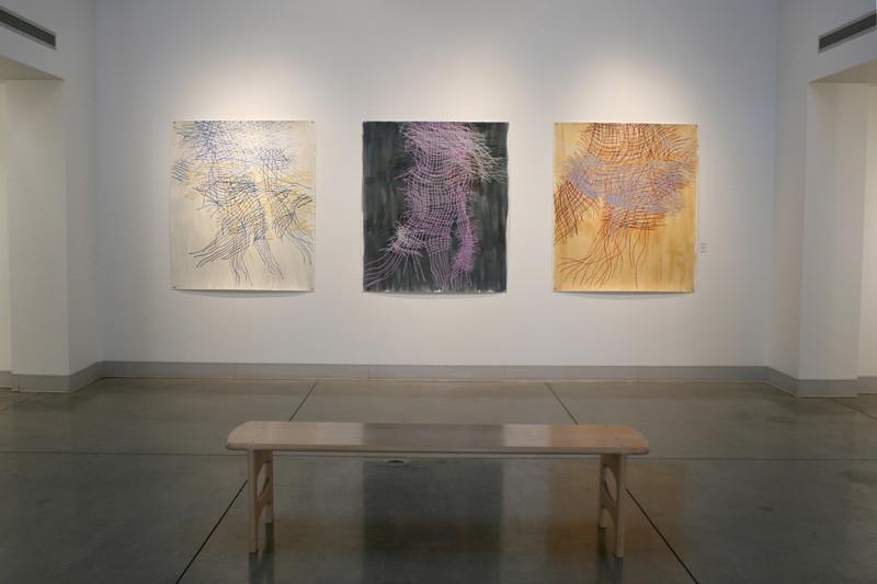 Fort Lewis College Art Gallery, Durango Colorado 2015