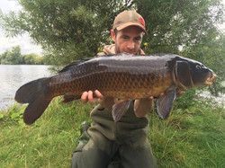 West country boilies