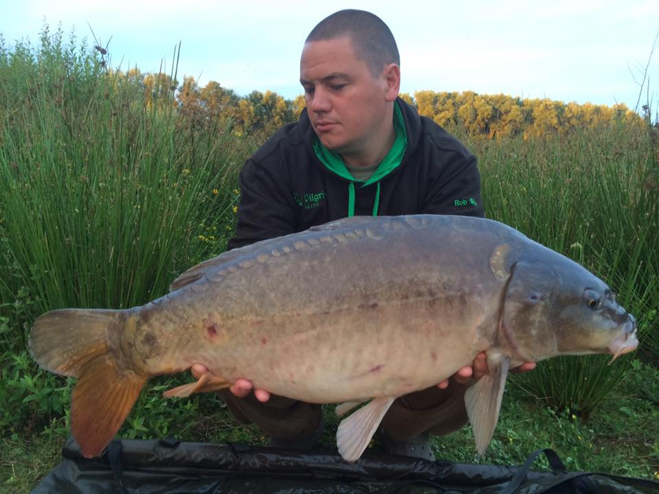 Krill boilies from Pilgrim baits
