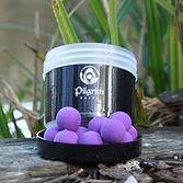 flouro purple pop up boilies