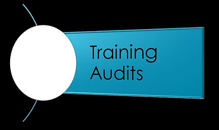DSAT training audits, first, second, third party JSP 822