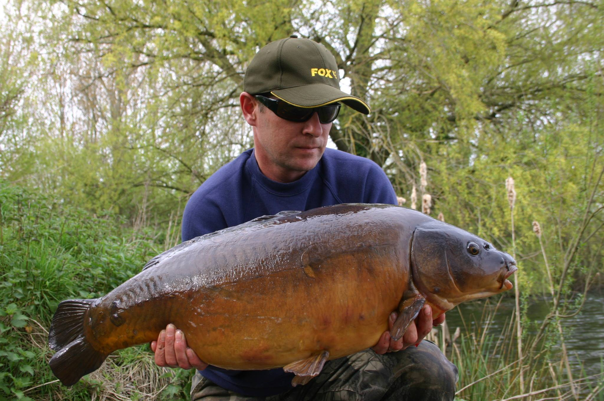 Pop up down carp method