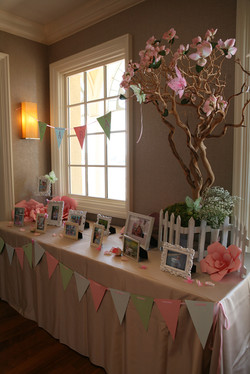 Photo Table at HB