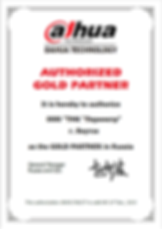 Dahua Authorized Gold Partner 2019.png