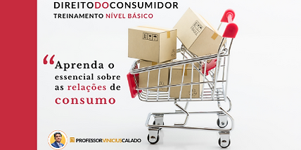 TREINAMENTO BÁSICO (1).png
