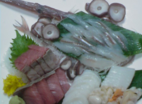 2008/12/19: このお魚は何?