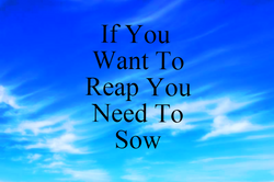 If You Want to Reap