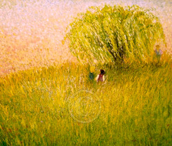 Commission Willow Tree Chloe Shalini