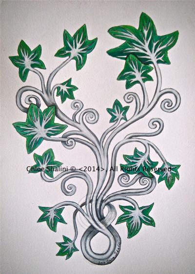 Ivy 1 C Shalini