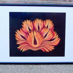 Flaming Lotus