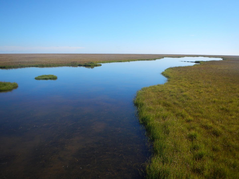 Lena river
