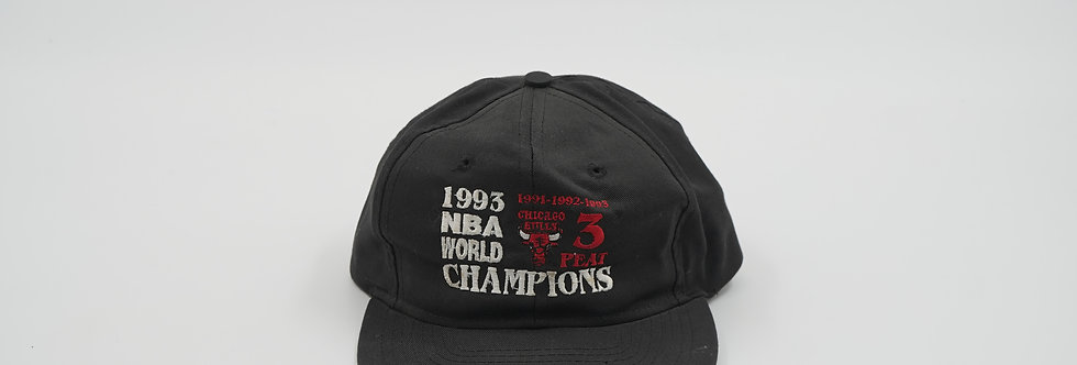Chicago Bulls 1993 World Champions