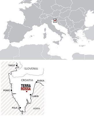 TERRA ROSSA - Extra Virgin Olive Oil
