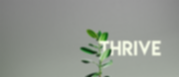 Thrivesite.png