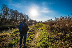 Walking-2.jpg