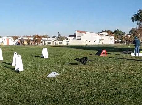 outdoor practice.jpg