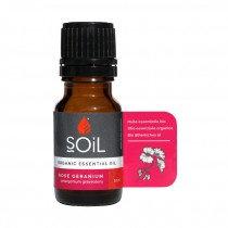 Rose Geranium Essential Oil 10ml