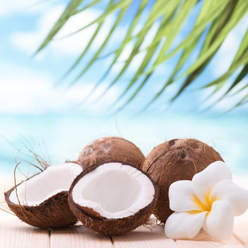 Tropical Coconut Fragrance 100ml