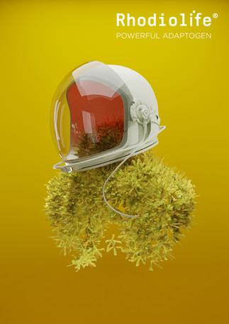 Helmet_rho_3_post.png