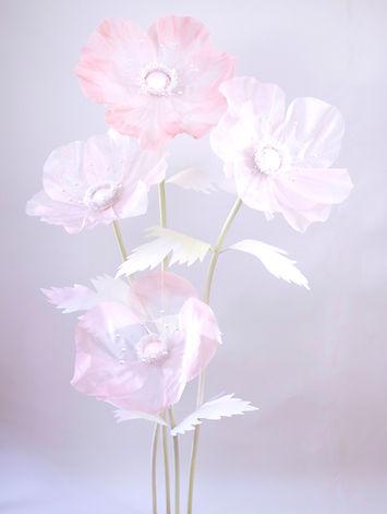Anemone-Sheer-Blush-3_edited_edited.jpg