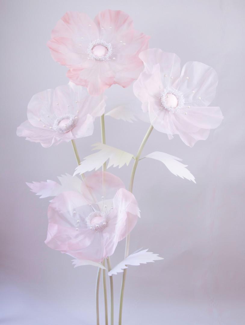Anemone-Sheer-Blush-3_edited.jpg