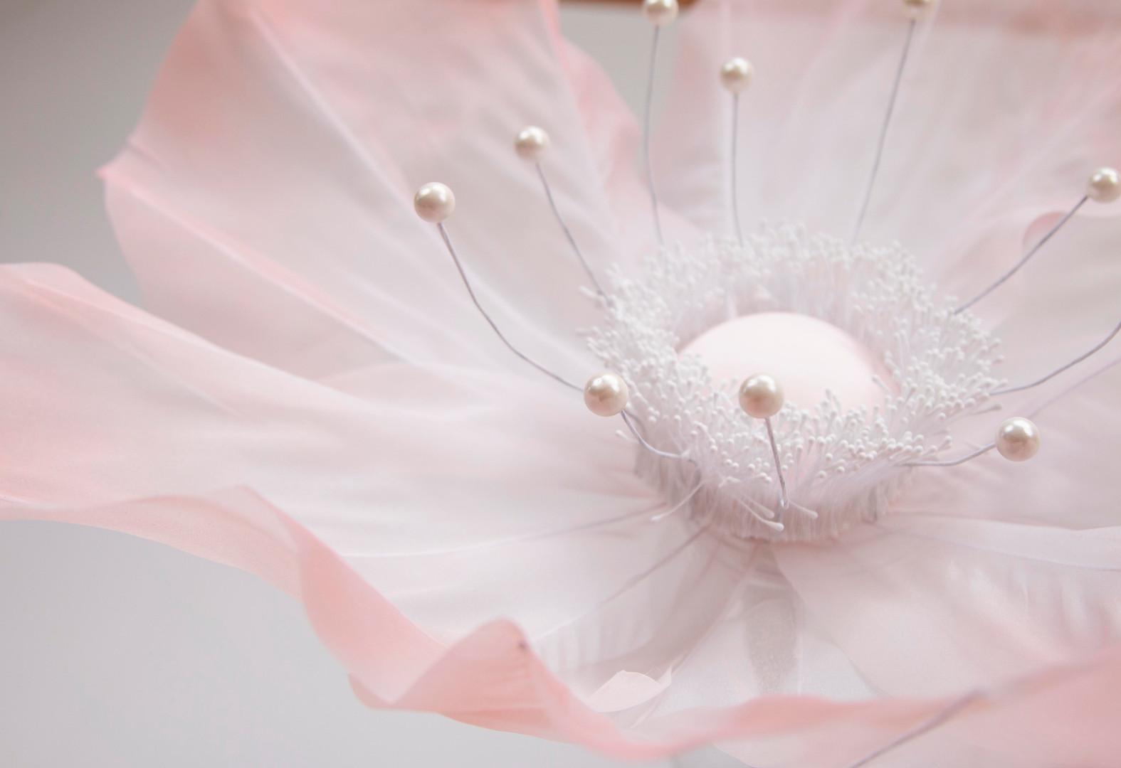 Anemone-Sheer-Blush-2.jpg