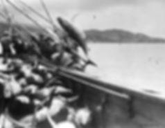 TunaFishingSanDiego-SanDiegoHistoryCente