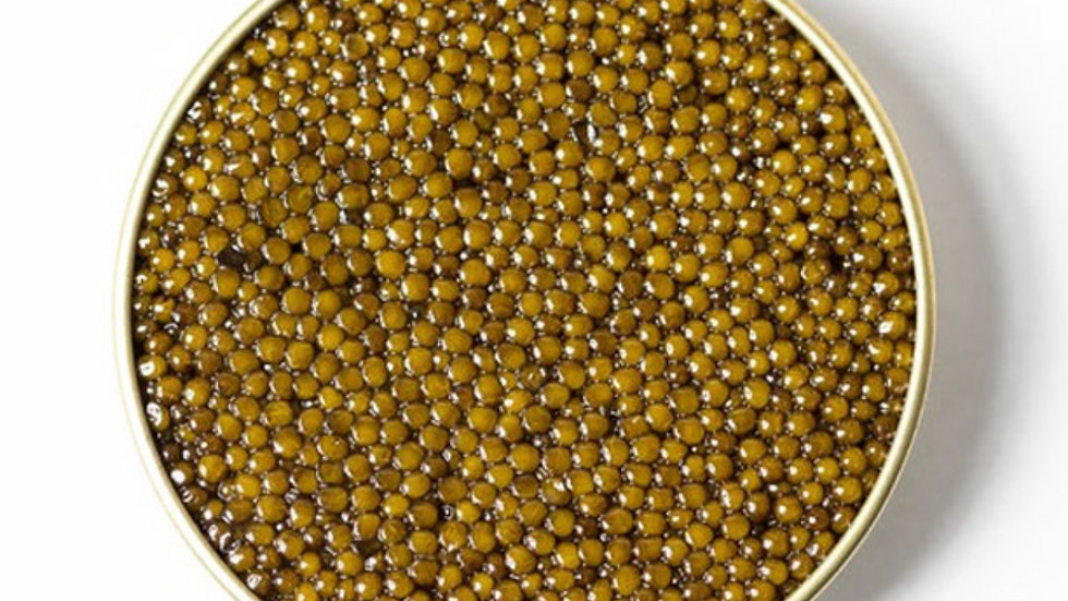 Kaluga Sturgeon Black Caviar GOLD
