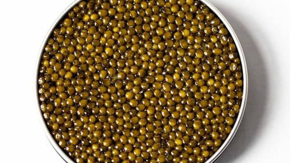 Kaluga Sturgeon Black Caviar RESERVE