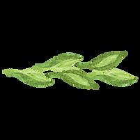 Gemalte Blätter