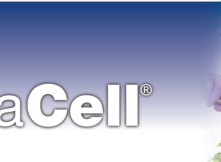 EnduraCell® | An Essential Component of any Preventive or Therapeutic Nutraceutical