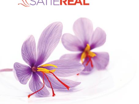 SATIEREAL®   A natural, powerful &patented appetite regulator