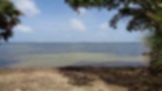 Belize Beachfront Corner Lot #28