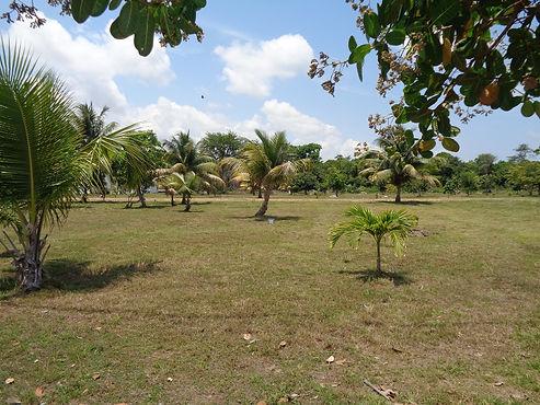 Belize Real Estate Lot 10