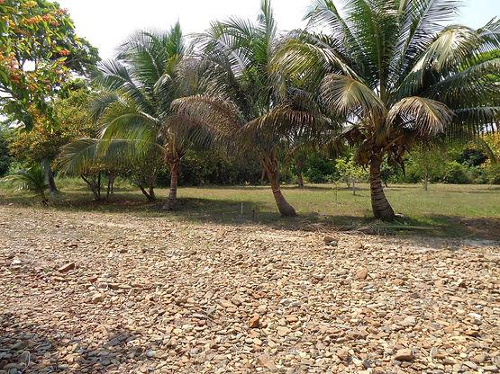 Belize Real Estate Independence Village